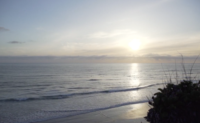Beal Real Estate City Guide | San Diego's Best Beaches