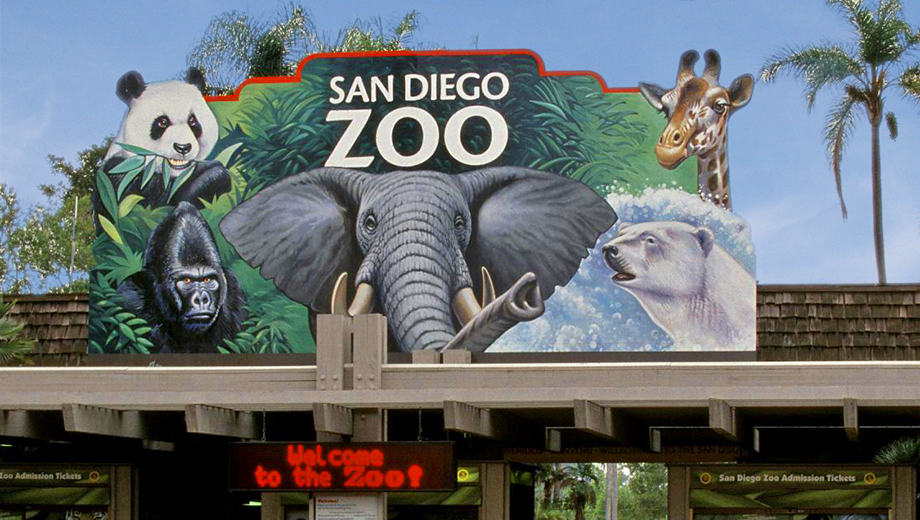 Bealre Knows San Diego Zoo Beal Real Estate